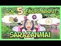TOP 5 FACTS about SARAZANMAI I SARAZANMAI Explained