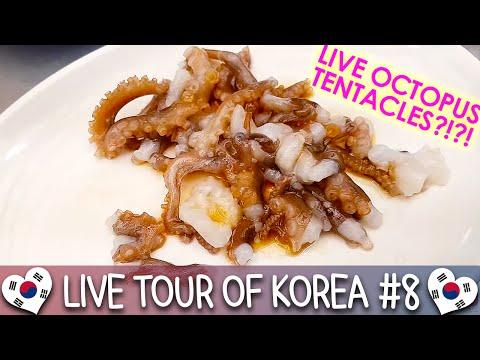 Dongdaemun & Gwangjang Market 동대문 & 광장시장 - 🇰🇷 LIVE TOUR OF KOREA #8