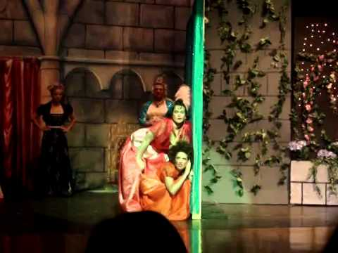 Again, not one of my best moments, but we had so much fun putting on this play! Here it is: Step Sisters' Lament. 2009