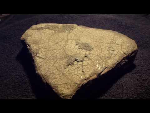 Fossils  - from Iceland - Steingervingur  - af laufblaði  - Jarðlög - Íslenskt grjót