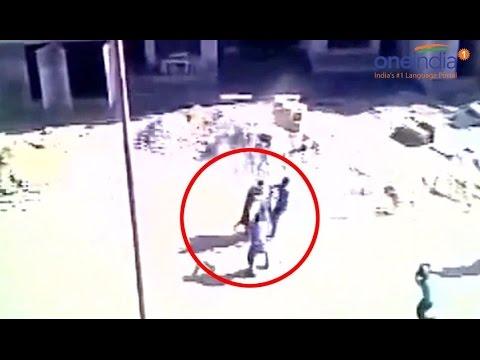 Leopard attacks labourers in Meerut, 5 injured; Watch video