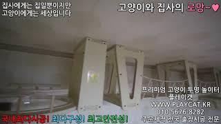 마포 아파트 거실 - 플레이캣 고양이 투명 놀이터 원목…