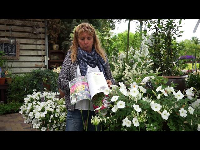 Handige tuinadviezen en praktische tuintips | GroenGlossy zomer 2018