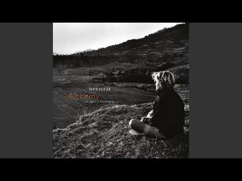 David Sylvian | The Fat Angel Sings
