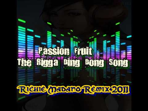 Passion Fruit - The Rigga Ding Dong Song (Richie Madano Fun Mix)