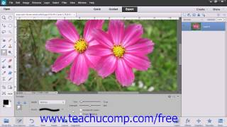 Photoshop Elements 12 Tutorial The Smudge Tool Adobe Training Lesson 13.5