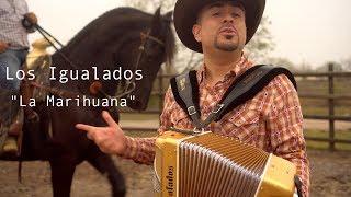 Los Igualados - La Marihuana (Video Oficial 2018)