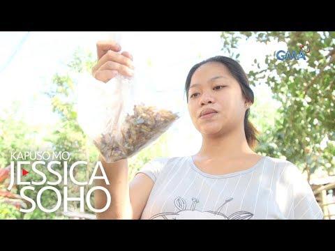 Kapuso Mo, Jessica Soho: Pera na, naging basura pa!