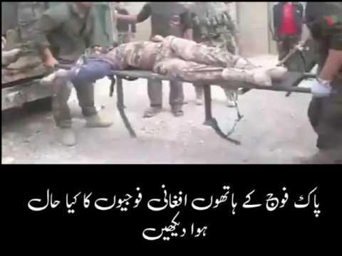 پاک فوج کے ہاتھوں افغانی فوجیوں کا کیا حال ہوا دیکھیں
