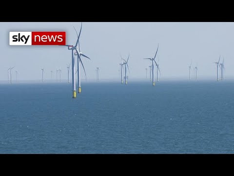 Calls for greener Britain after pandemic