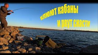 Рыбалка Крым Водохранилище Самарли КЛЮЮТ КАБАНЫ И РВУТ ВСЕ СНАСТИ