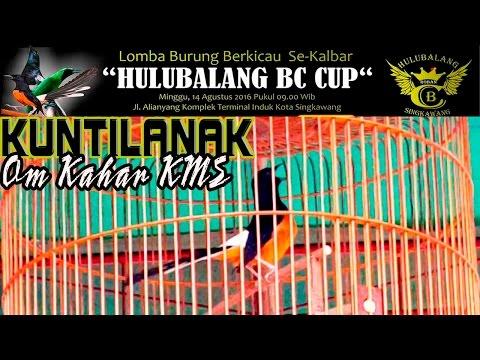 SUARA BURUNG | Masteran Cililin KUNTILANAK Milik Om Kahar KMS di HULUBALANG BC CUP Singkawang