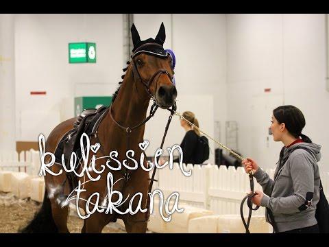 5 päivää messuilla? || Helsinki Horse Fair 2017