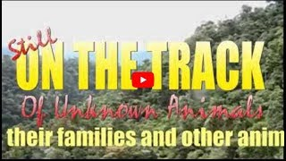 On The Track (of Unknown Animals) Ep. 89 (Out of place reptiles, British bigfoot,  German rheas etc)