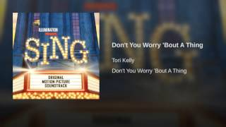 Don't You Worry Bout A Thing   Stevie Wonder   (Sing Soundtrack Cover)