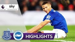 Richarlison entscheidet das Spiel | FC Everton - Brighton 1:0 | Highlights - Premier League