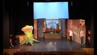 Little Shop Of Horrors-Mean Green Muva From Outa Space