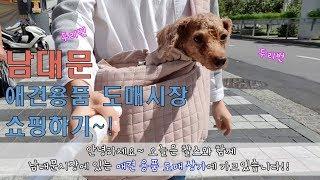 남대문 애견용품쇼핑!!