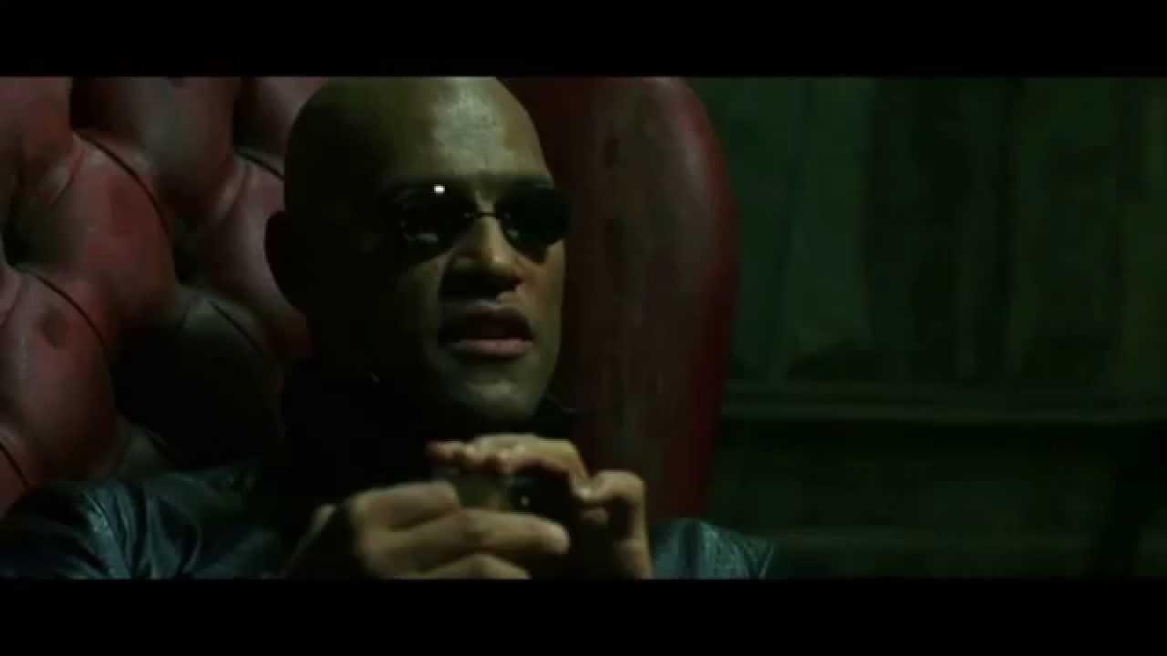 """Et recomanem una pel·lícula """"Matrix"""""""