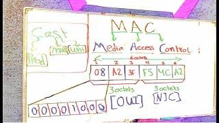 ما هو ال mac address؟ وما هي صفاتة؟ وما هو الفرق بين الـ mac address و الـ ip address؟