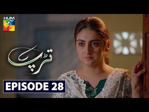 Tarap Episode 28 HUM TV Drama 27 September 2020