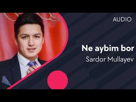 Sardor Mullayev - Ne aybim bor (AUDIO)