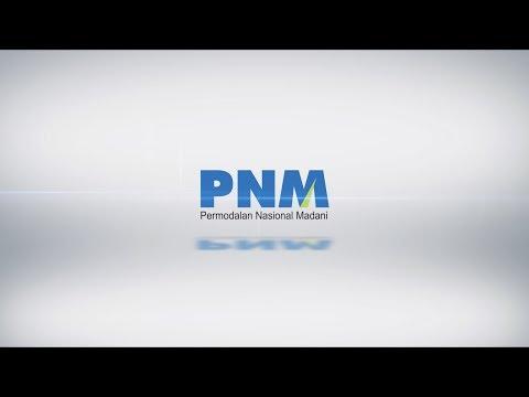 PNM PROFILE 2018