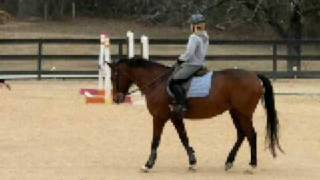 Atlanta Pony Club - show jumping clinic 3