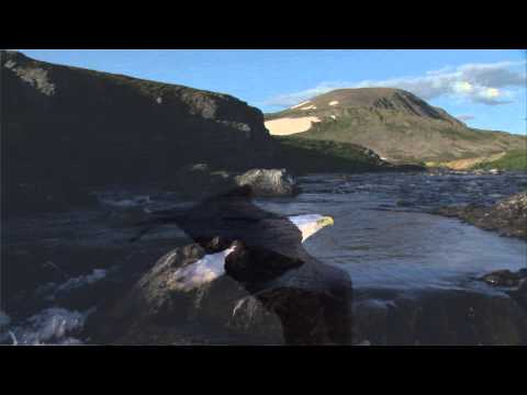 Salmon Come Home Chuitna River Version  Dana Lyons
