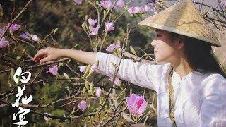 """澜沧三月赏白花,做了一桌""""白花宴""""【滇西小哥】"""