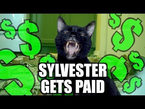 Sylvester Gets da Money