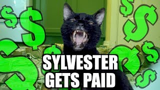 talking-kitty-cat-68-sylvester-gets-paid