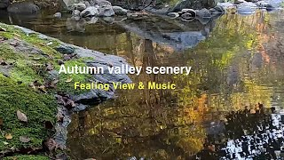 Healing View & Music. 6 #힐…