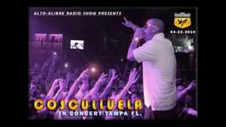 Cosculluela   R.I.P Full Records (Tiraera Pa ' Ñengo Flow) Live in Tampa - 2010