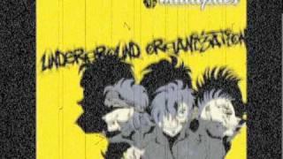 underground organization  /  multiplies