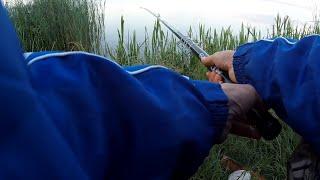 РИБАЛКА З НОЧІВЛЕЮ в ЧЕРВНІ 2019 ШАШЛИК та СНІДАНОК ПО АНГЛІЙСЬКИ Рибалимо і відпочиваємо на новому озері!