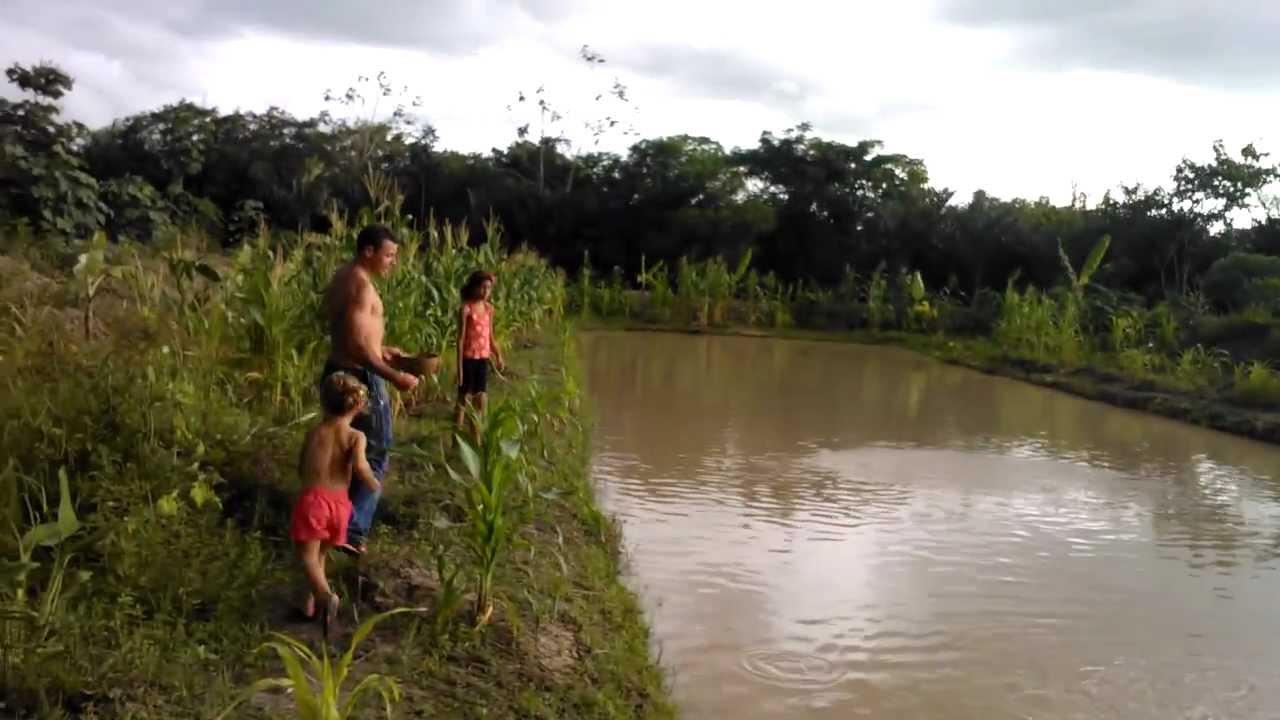 Anajatuba Maranhão fonte: i.ytimg.com