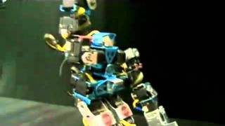 Robobob-I dreamed i saw St Augustine.AVI