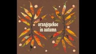 Mini Album『orangepekoe in autumn』#1 http://amzn.to/S5NeMA.