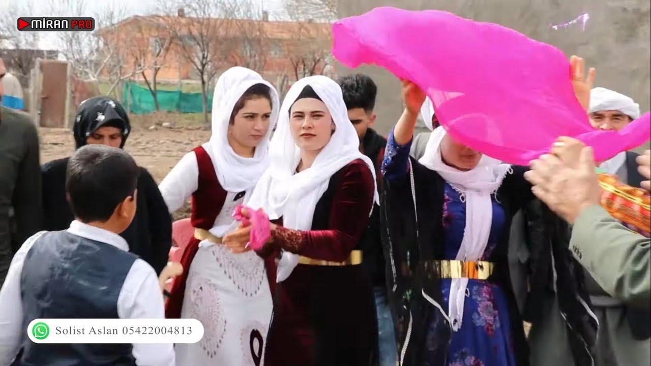 ALI KAYIR - LE CENE / LE MEYRO                           [Official Kurdish Music Video]