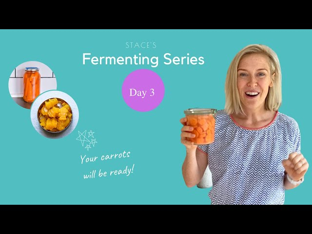 Stace's Fermenting Series - Day 3 ~ Carrots Are Ready & Which Ferments To Make Next