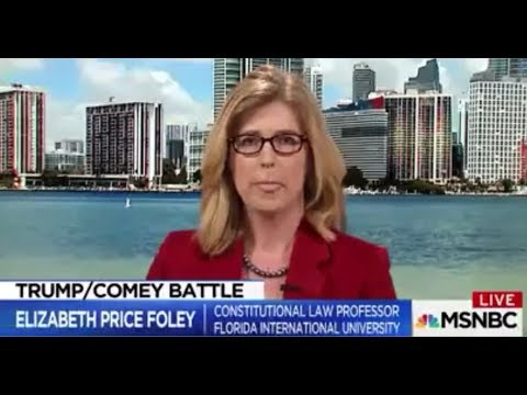 Law Professor CRUSHES Phony Democrat 'Obstruction of Justice' Narrative