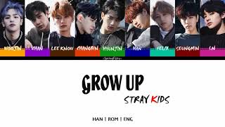 STRAY KIDS - GROW UP 잘 하고 있어 (HAN-ROM-ENG COLOR CODED LYRICS)