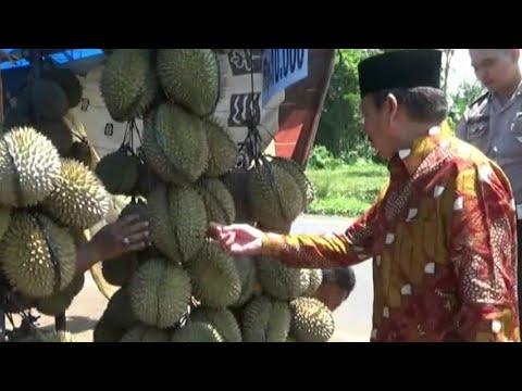 Warga Dan Tim Sukses Ditraktir Makan Durian