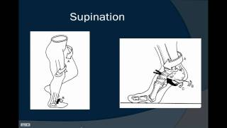 A brief discussion on Pronation and Supination