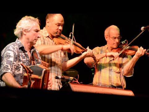 2015 Rainforst World Music Festival - LE BLANC BROS CAJUN BAND (Australia)