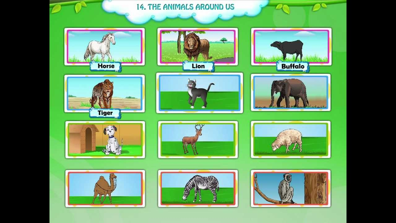 Now Animals For Kids 15 Min LEARN ANIMALS KIDS English ...