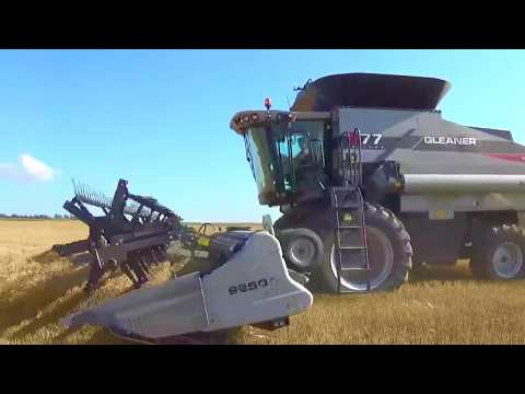 2017 Wheat Harvest near Preston Kansas with 3 Gleaner Combines and a Versatile Delta Track