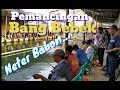 LOMBA MANCING - NETER BABON - PEMANCINGAN BANG BEBEK