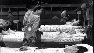 U.S.Army nurses treat injured soldiers and doctors perform surgery in Korea durin...HD Stock Footage
